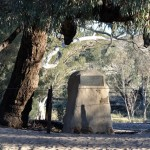 Burkes Grave